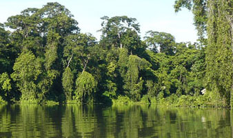 3 Days/2 Nights Tortuguero Package
